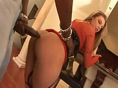 Lex on blondes 4 - brianna love