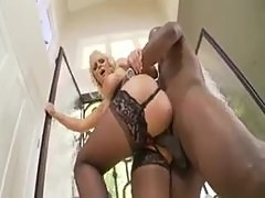 Phoenix Marie makes oral love to big black cock